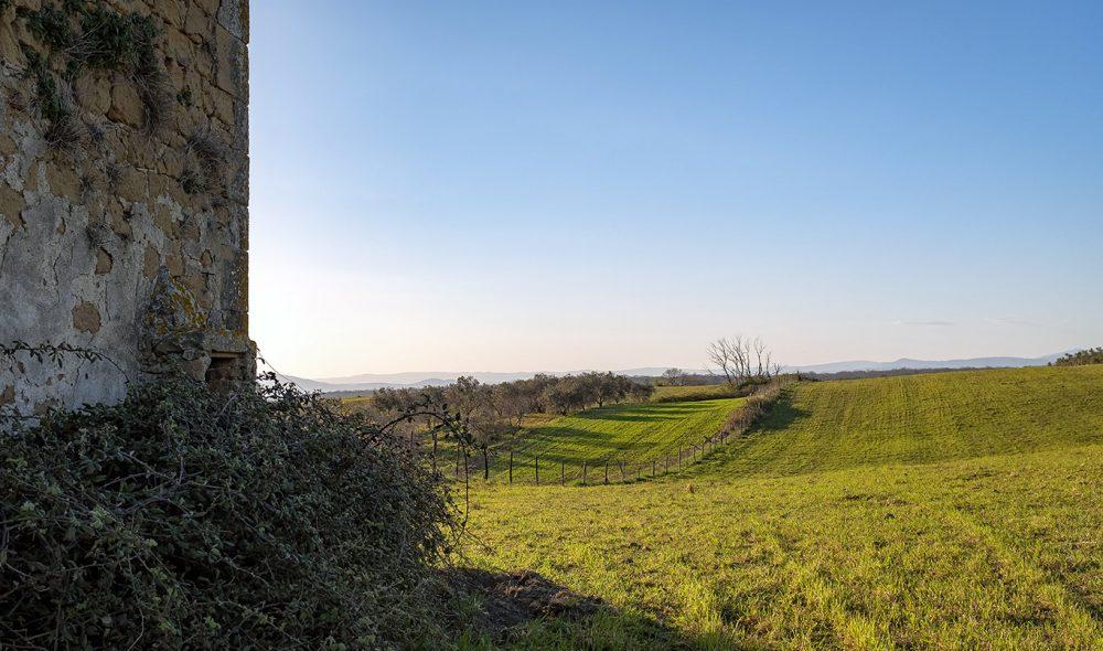 LANDLIG: Maremma har store grøntområder og gårder.