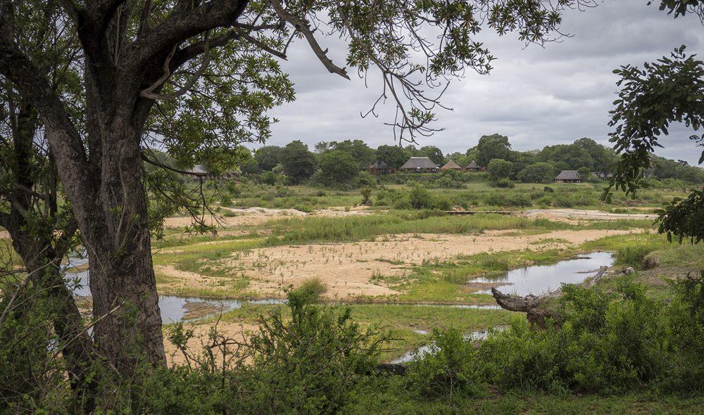 TETT PÅ NATUREN: Mala Mala Game Reserve er godt tilpasset omgivelsene, på grensen til den store Krügerparken.