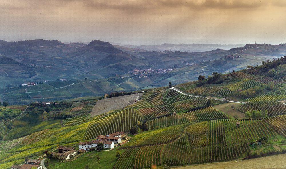 EPISK: Landskapet rundt Barolo sett fra landsbyens høyeste bygg.