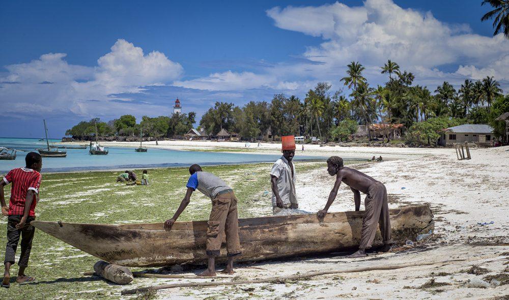TIL HAVS: Det er klart for en ny dag ute på havet for disse fiskerne fra landsbyen  Nungwi.