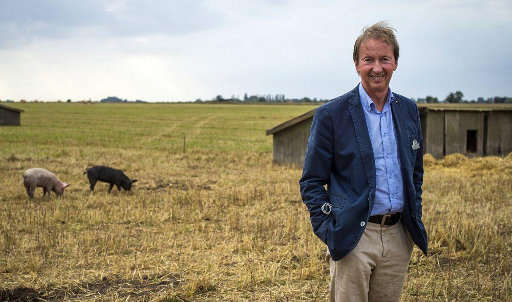 ØKOBONDEN: Gründeren Rolf Axel Nordström i sitt rette element – blant grisene.